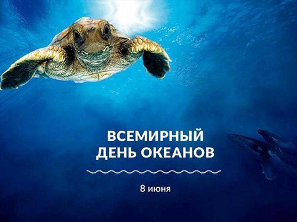 Открытки Картинка с океаном ко дню океанов. Картинка с черепахой на Всемирный день океана. Открытка 8 июня Всемирный день океанов с подводными обитателями. Открытка с пляжем к всемирному Дню океанов. Открытка с океаном и скалами на Всемирный день океанов. Открытка С чистой водной гладью на Всемирный день океанов.